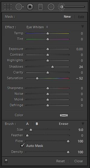 Lightroom Adjustment Brush Settings - Eye Color Enhancement. Shadows +24, Saturation -52